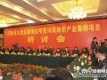 河南鸿闽纺织产业群宣传片 (547播放)